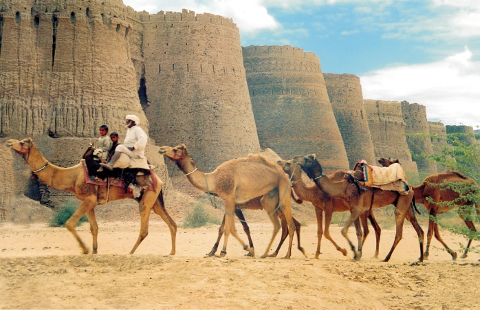 Camel passing by the Draban forte in Cholistan desert of Pakistan