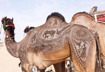 a4b7ac9cf1d24f5a0436231ea5e49b80--camel-tattoo-hair-cut