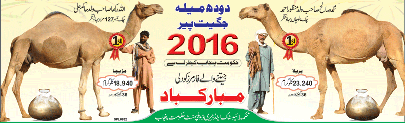 Camel milk winners 2016.png