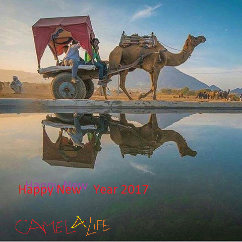 Heartiest congratulation and Happy New Year 2017