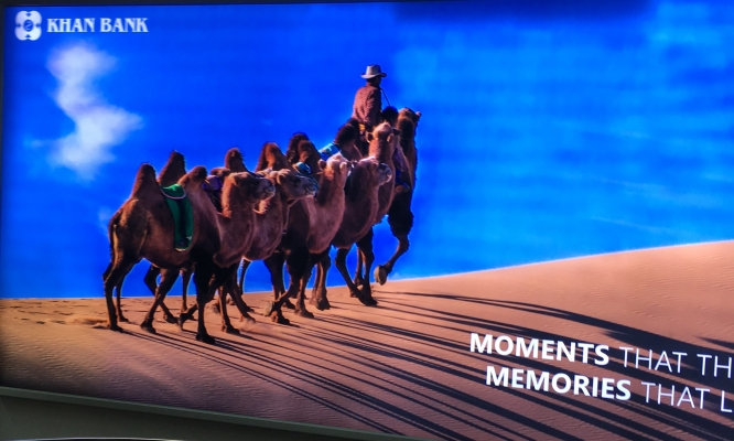 A Bank advertisement with camel, the first thing I saw on arrival