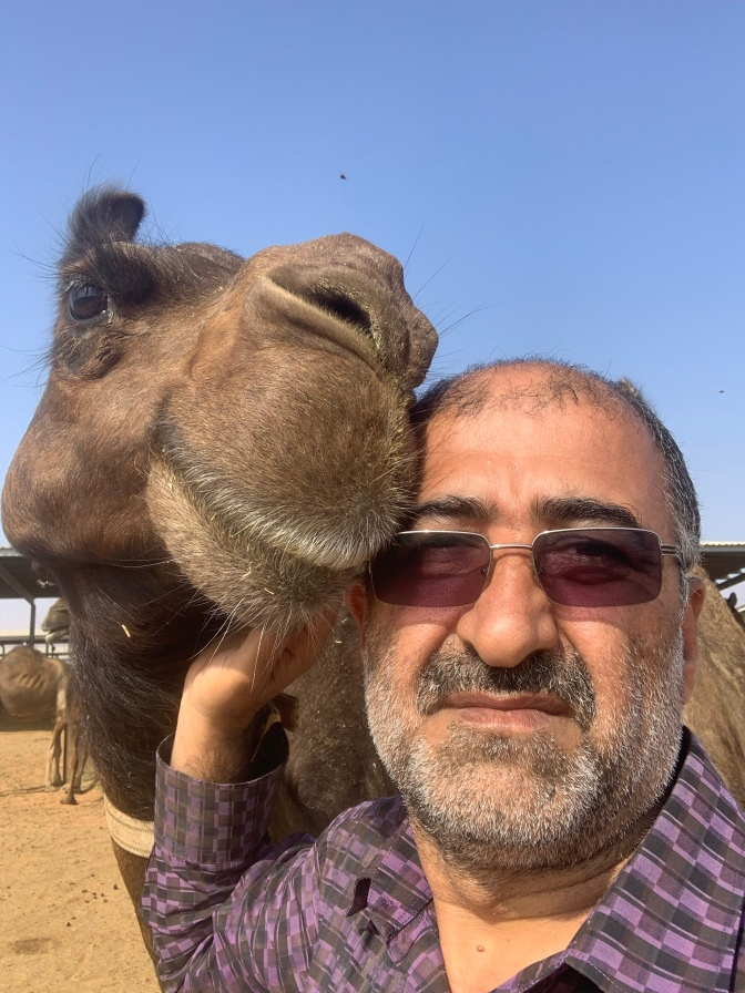 The Author Love the Camel