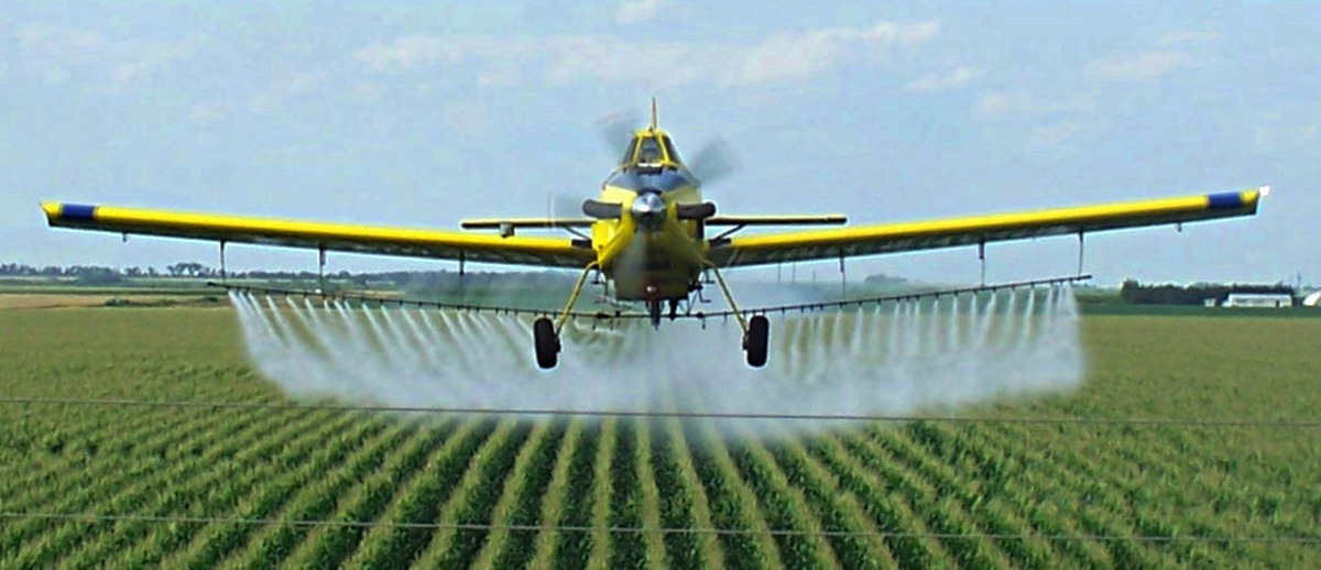 German toxicologist accuses EU authorities of scientific fraud over glyphosate link with cancer