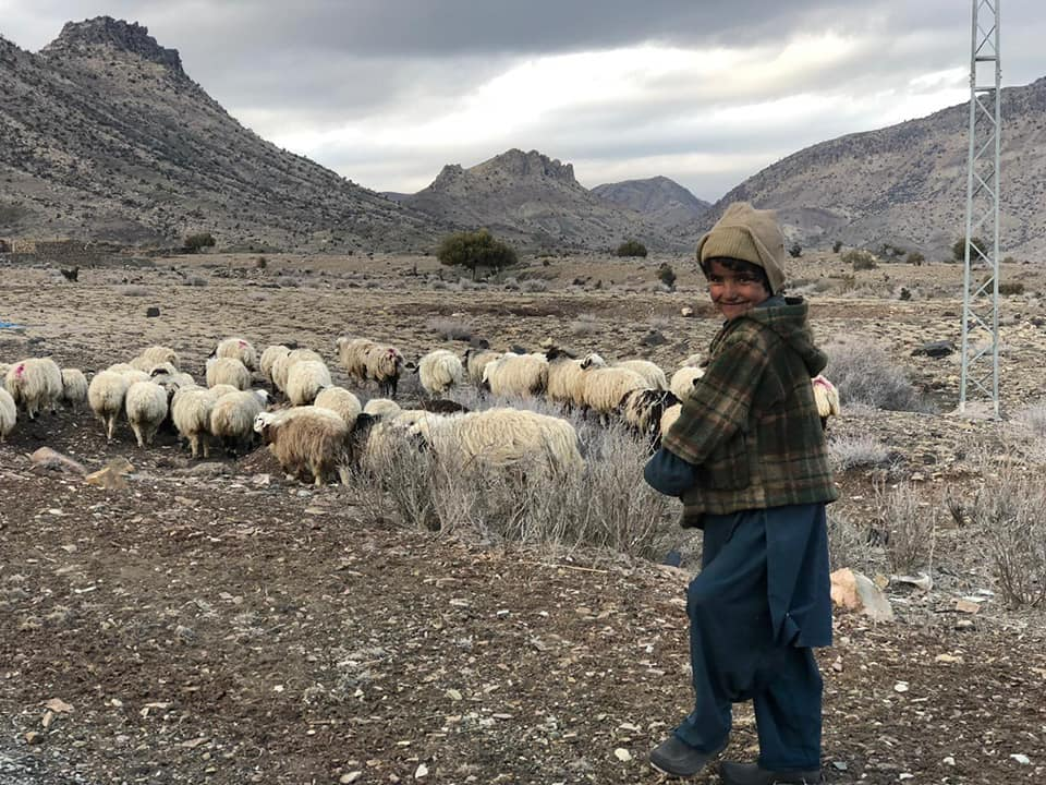 Zhob is home to the true sheep and goat culture